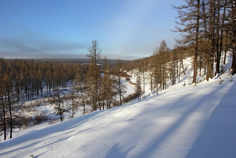 Snowcapped Imágenes De Stock Snowcapped Fotos De Stock: Winter Landscape In South Yakutia Stock Image
