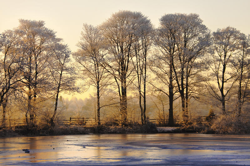 Winter landscape at sunset. A frozen winter landscape with golden sunset stock photography