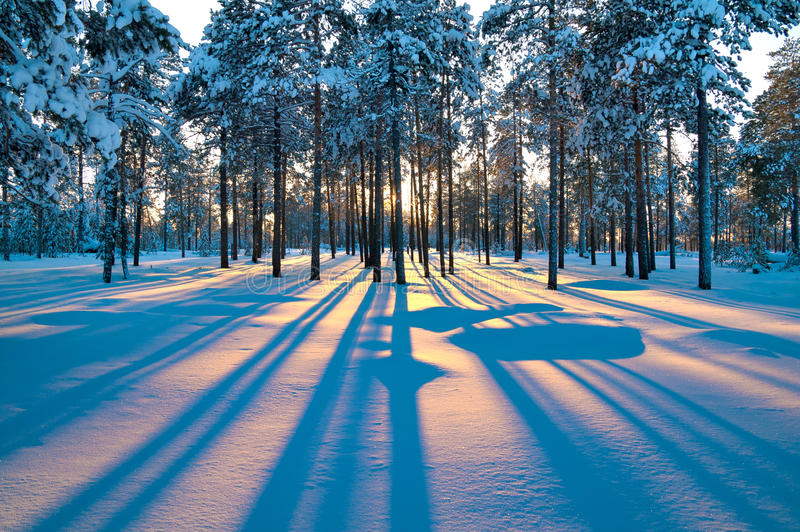 Download Winter landscape. Sunset. stock photo. Image of cold - 18410388