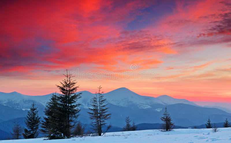 Download Winter Landscape at Sunset stock image. Image of country - 23674933