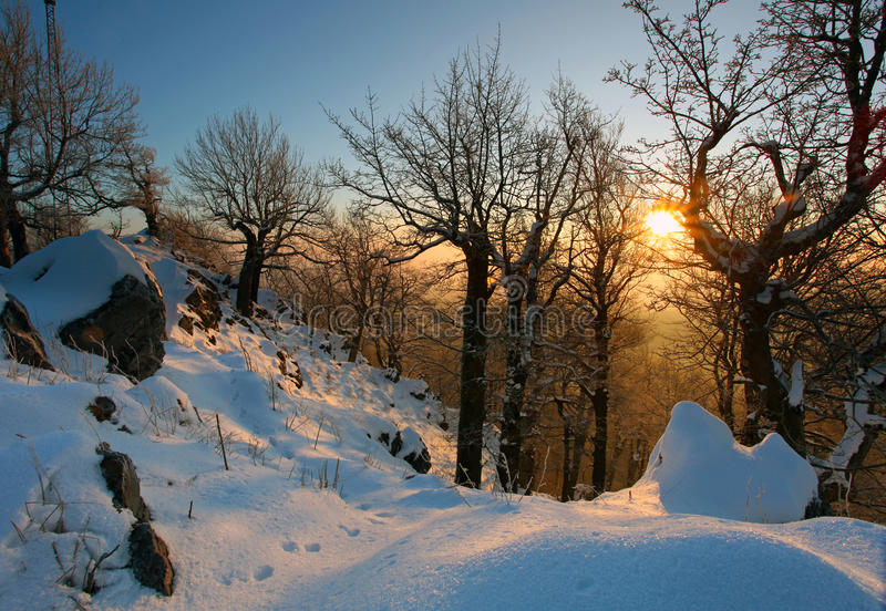 Winter Landscape On A Sunset With Trees Silhouette Stock Images