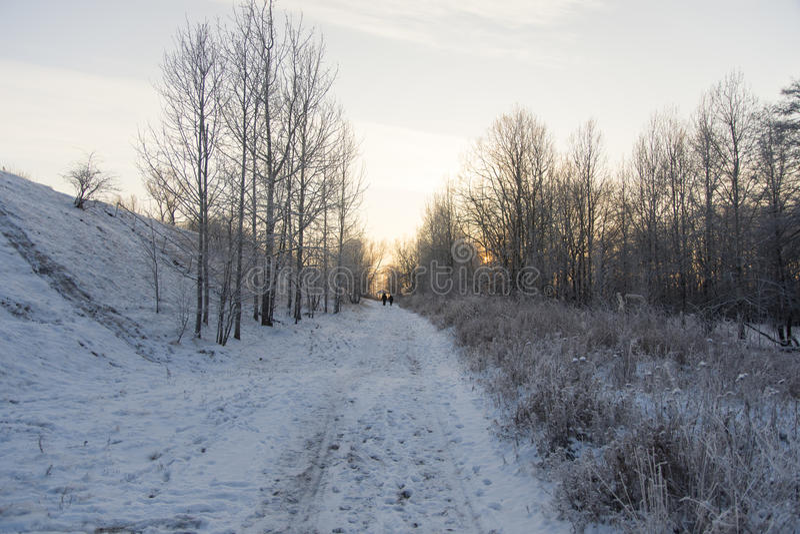 Winter landscape. In the vicinity Piterburg stock photo