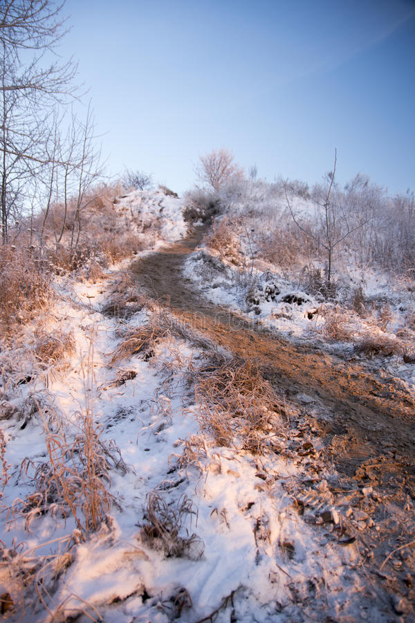Winter landscape. In the vicinity Piterburg royalty free stock photo