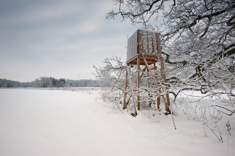 Download Winter Landscapes Royalty Free Stock Image - Image: 17657686