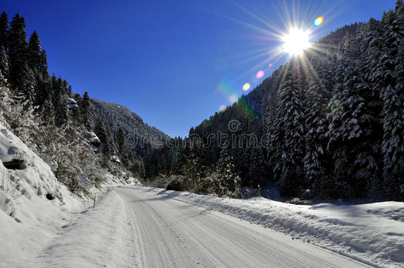 Winter landscep royalty free stock images