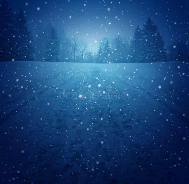 Winter-Landschaft lizenzfreie abbildung