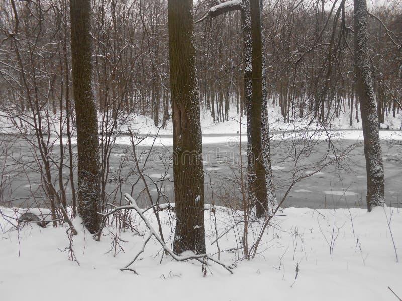 Winter landscape, pond. stock photography