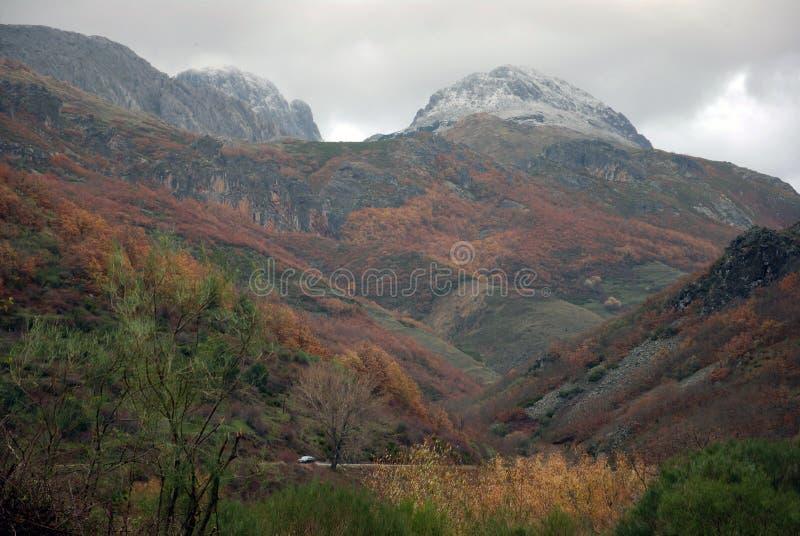Winter in León. Spanien. lizenzfreie stockfotos