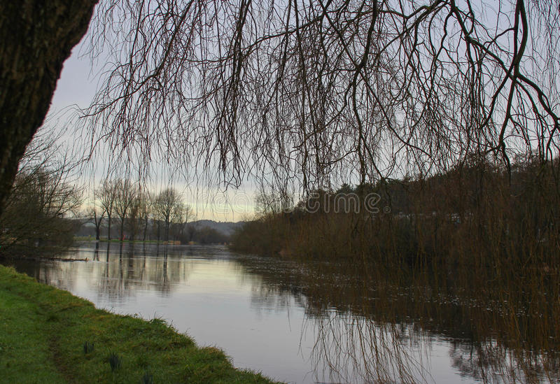 Winter on the Lee, Ireland. Winter flooding on the River Lee in Cork, Ireland royalty free stock photography