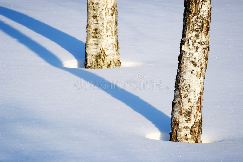Download Winter Lines Royalty Free Stock Images - Image: 513739