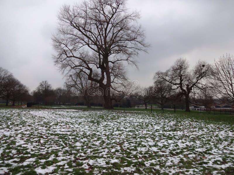 Winter in London stockbild