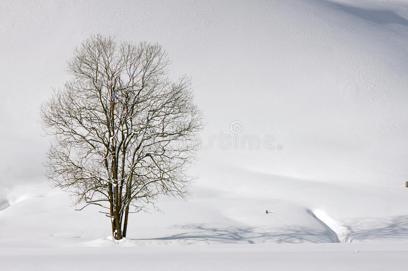 Winter lonelyness stock image