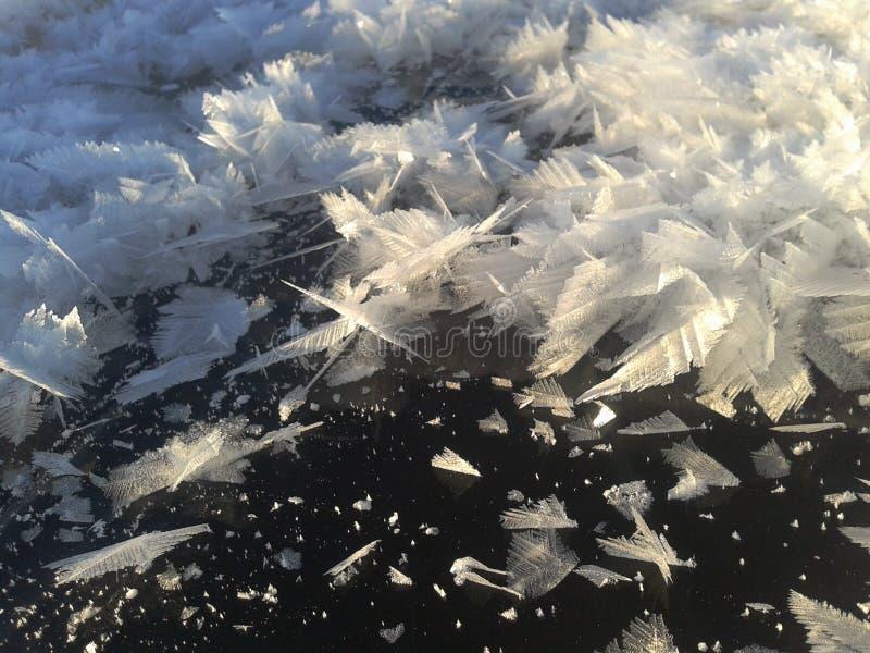 Winter-Märchen lizenzfreies stockbild