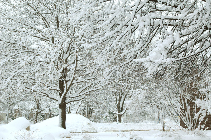 Winter-Märchenland XI stockfoto