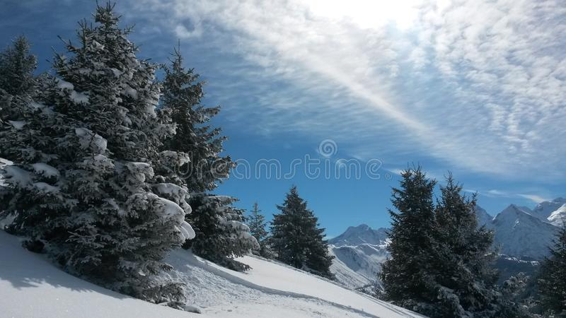 Winter magic stock image