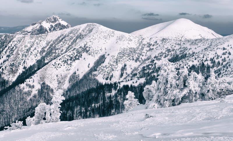 Winter in Mala Fatra mountains, Slovakia stock photo