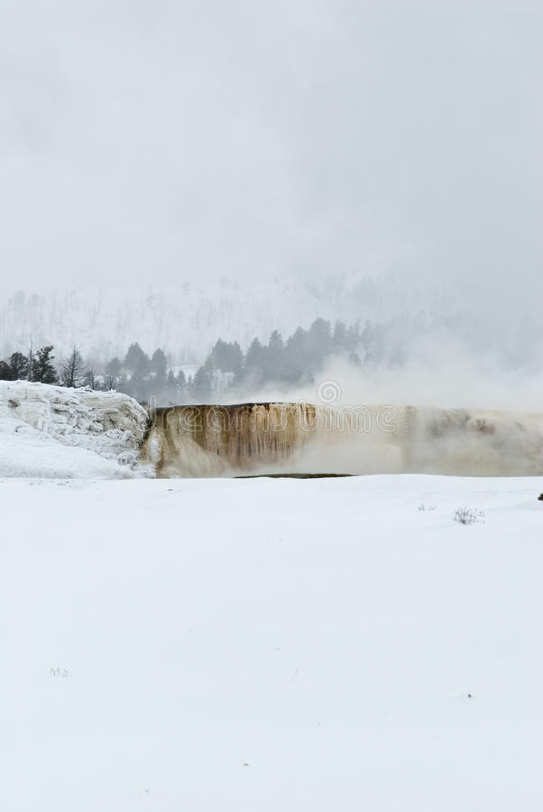 Winter, Mammoth Hot Springs, Yellowstone NP lizenzfreie stockfotografie