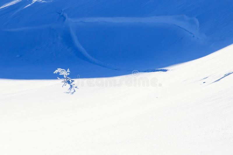 Winter mini macro of snow, white snow with blue shadow effect. Beautiful view landscape. North of Russia during winter snowy time. Nature beauty in picturesque royalty free stock photos