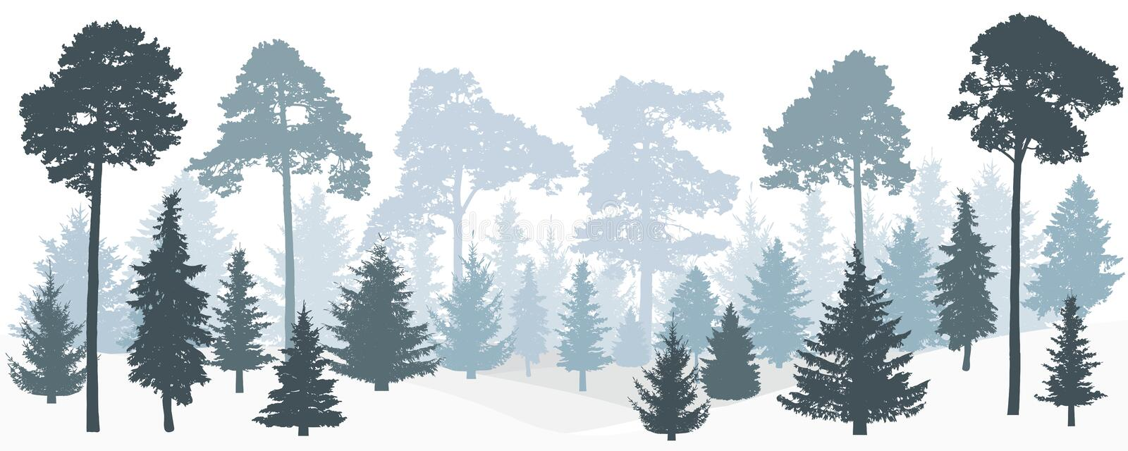 Winter misty forest fir trees, pines silhouette, panorama. vector illustration