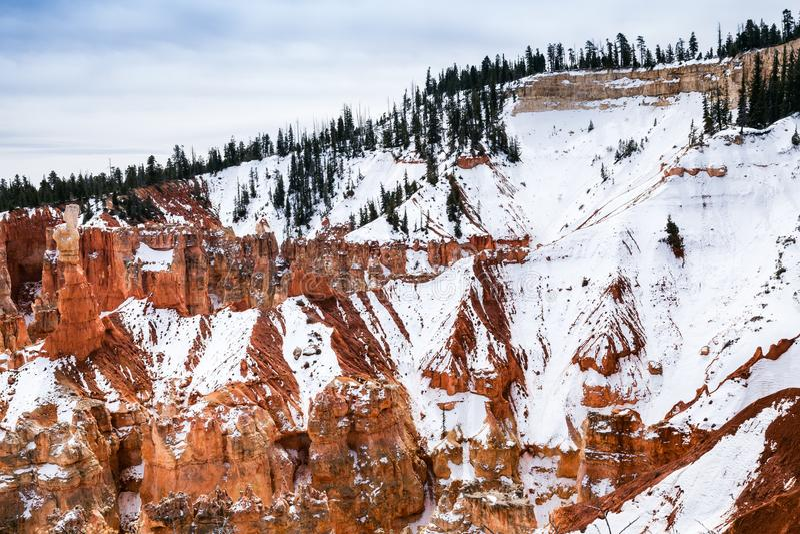 Winter-Morgen in Bryce Canyon National Park, USA lizenzfreies stockbild