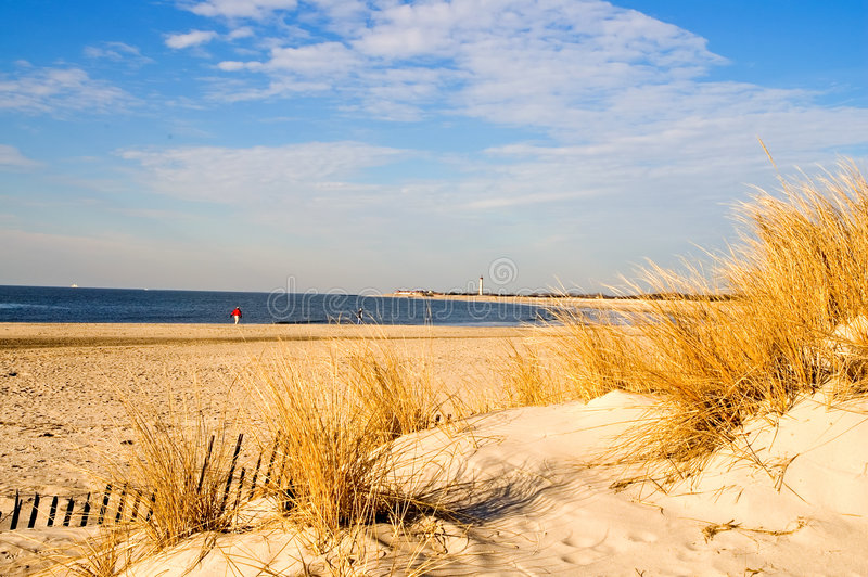 Winter-Morgen am Ufer lizenzfreie stockbilder