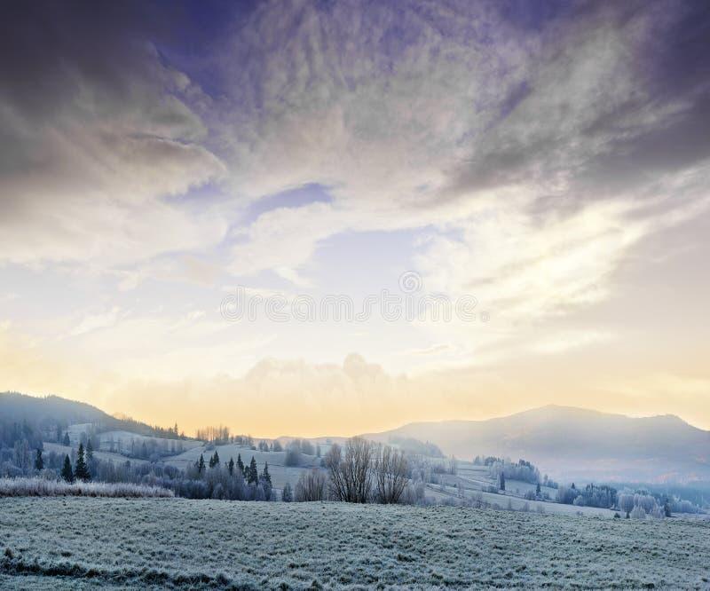 Winter Morning Royalty Free Stock Photo
