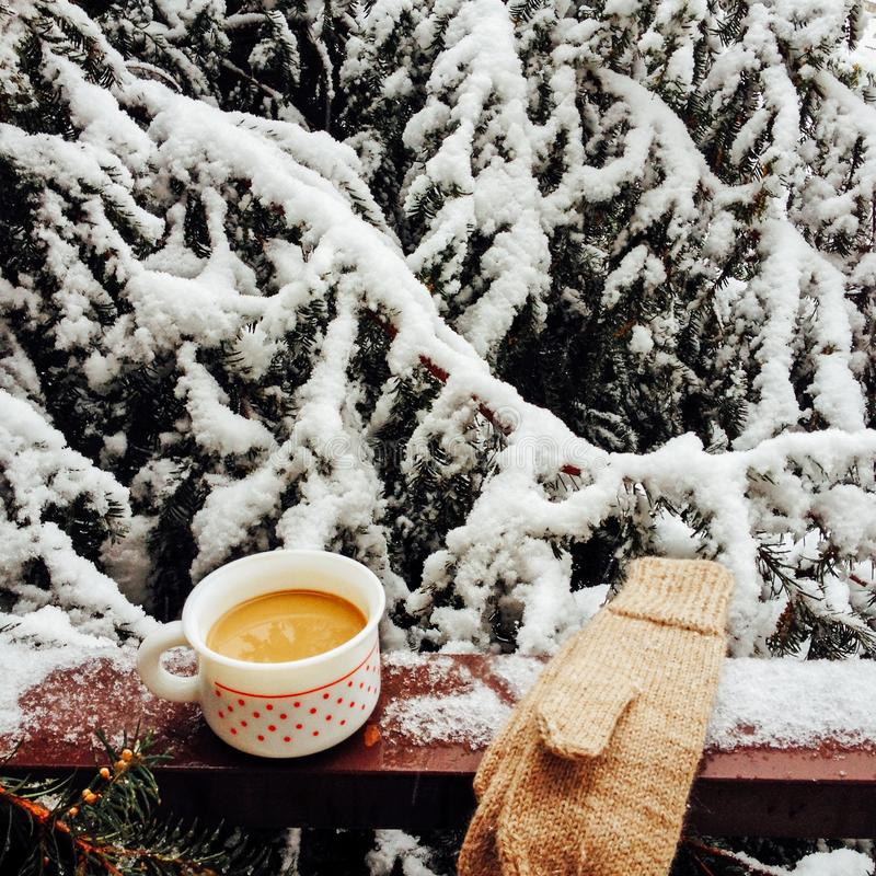 Winter morning scene with cup of hot drink and handmade mittens, snowy fir tree background royalty free stock photo