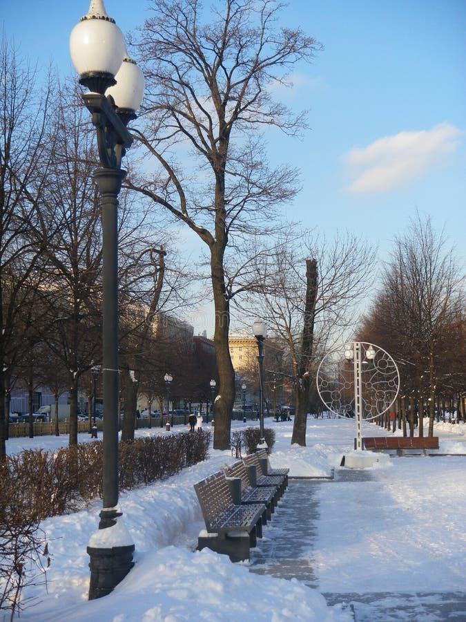 Winter-Moskau-Park lizenzfreies stockfoto