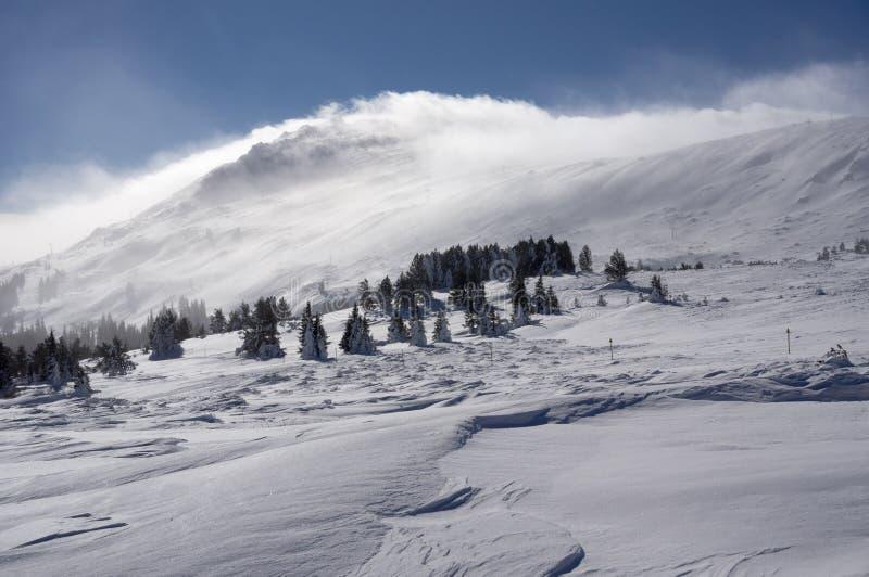 Winter mountain. Vitosha mountain - Bulgaria royalty free stock images