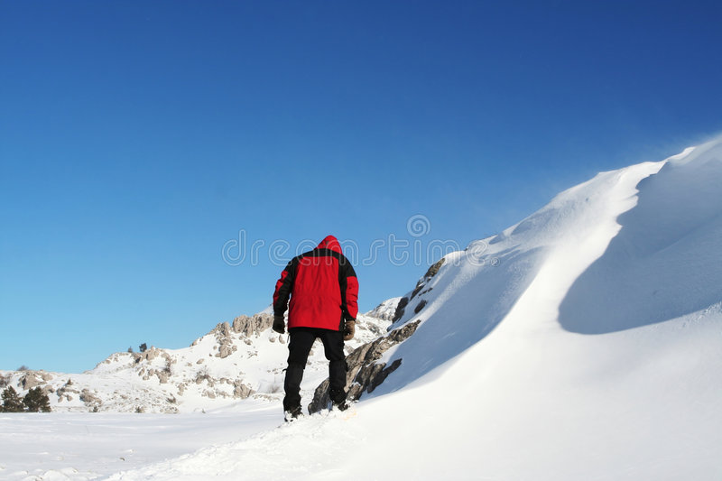 Winter mountain. Hiker in the winter mountain royalty free stock photography