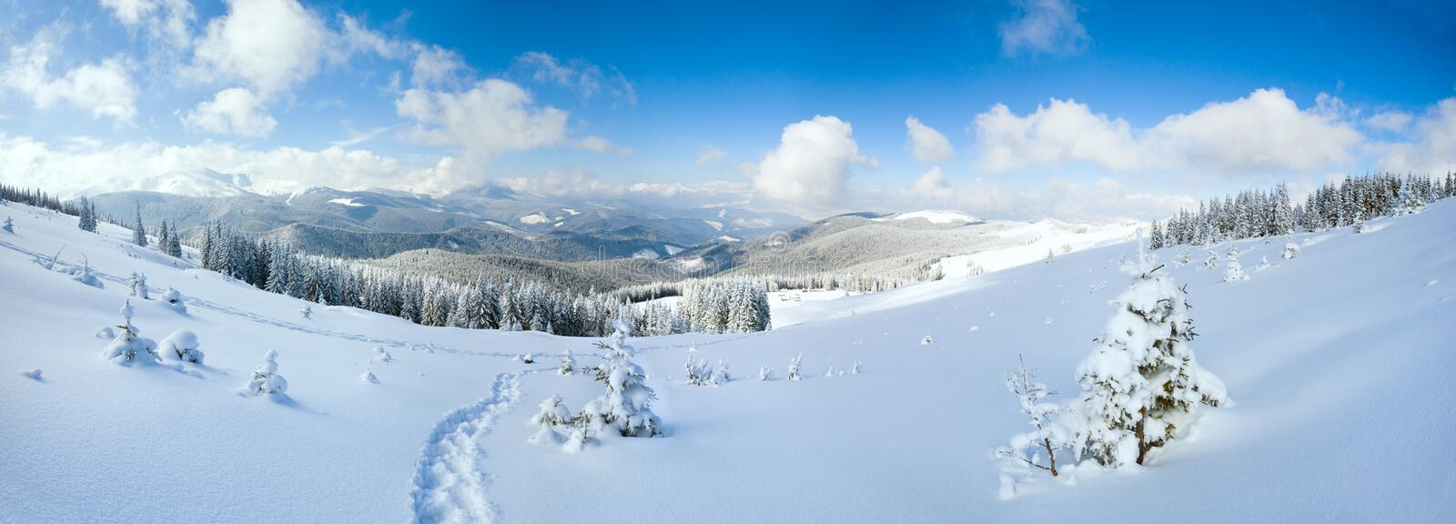 Winter mountain landscape. Winter calm mountain landscape with fir forest and sheds group on slope (Carpathian Mountains, Ukraine). Three shots stitch image stock photos