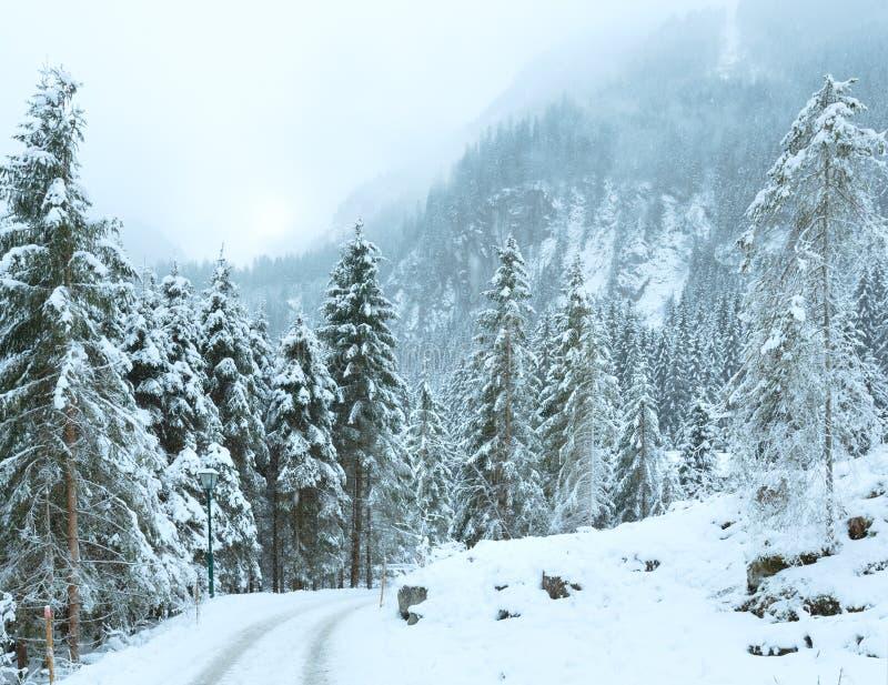 Winter mountain landscape (Austria, Tirol). royalty free stock images