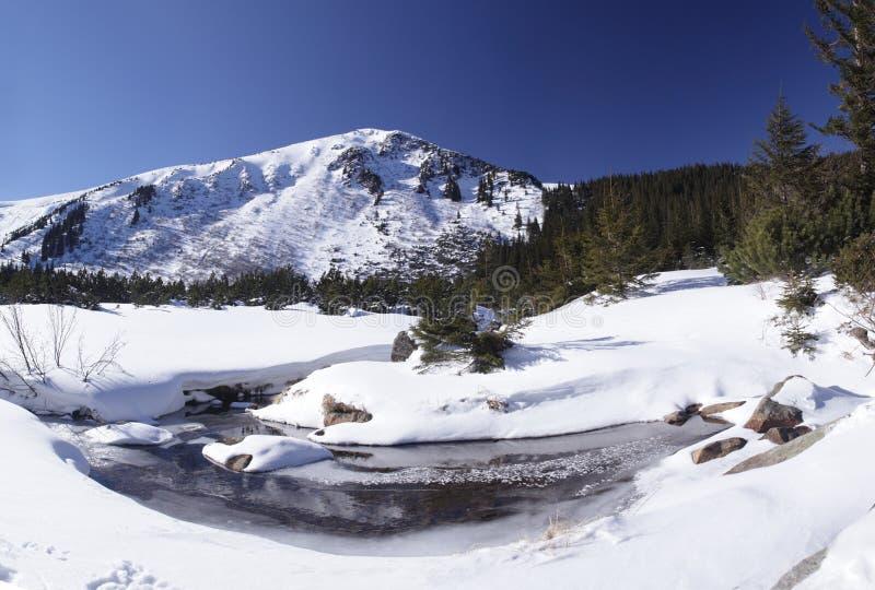 Winter landscape in Carpathian majestic mountains, Ukraine stock photos