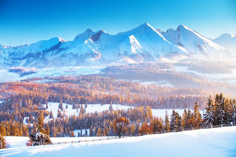 Winter mountain landscape. Clear blue sky over snowy mountain peaks in a frosty morning. Winter sunrise in the mountains. royalty free stock image