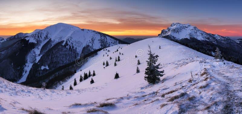 Winter mountain  landscape in Mala Fatra on hill Velky Rozsutec in Slovakia. Winter mountain landscape in Mala Fatra on hill Velky Rozsutec in Slovakia royalty free stock photography