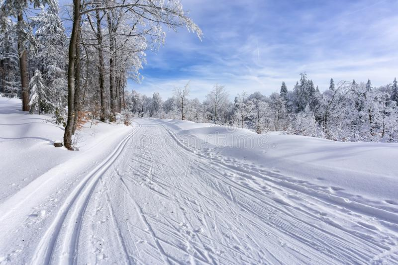 Winter mountain landscape. Trail to cross-country skiing. royalty free stock image