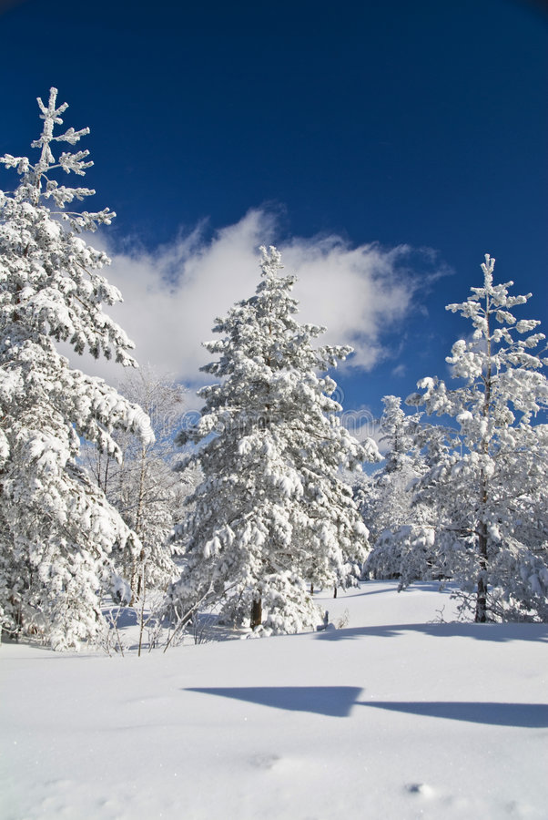 Winter Mountain Scene. Sunny winter day - winter mountain scene stock photography