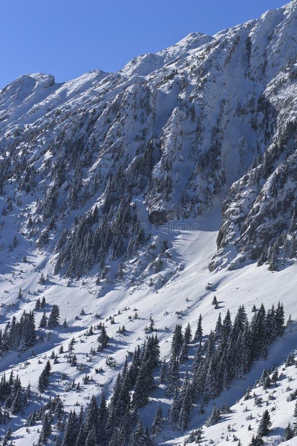 Winter mountain slope. In the Piatra Craiului Mountains , Romania stock photography