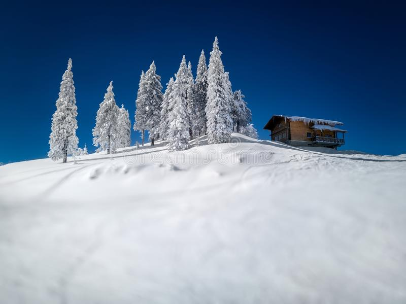 Winter mountainous snow landscape, with blurred foreground, spruce trees covered in snow and a wooden hut on the top of a mountain royalty free stock photo