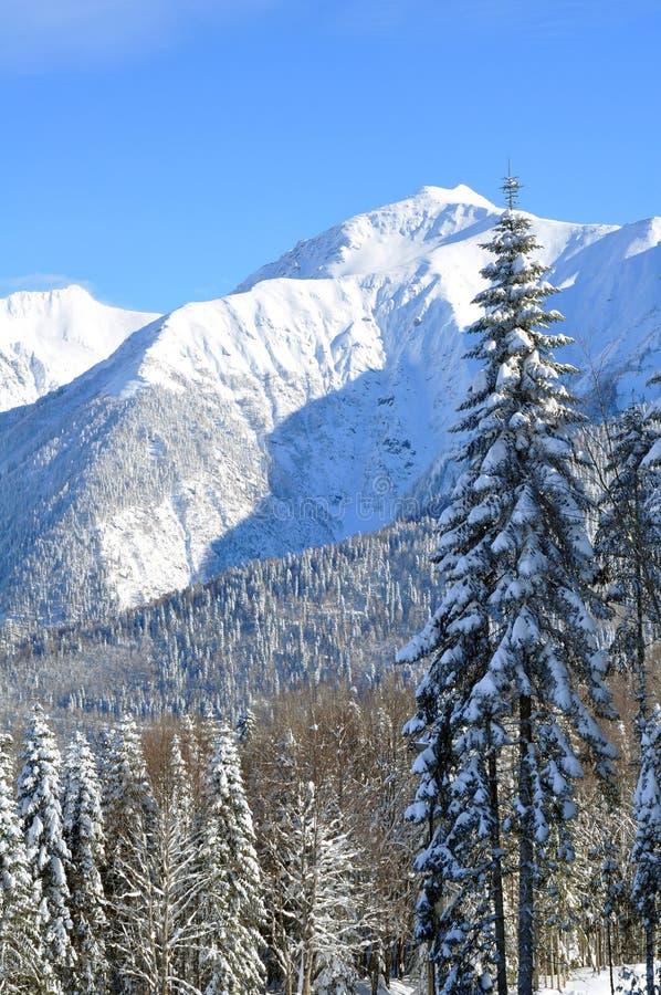Free Winter Mountains Royalty Free Stock Photo - 21449735