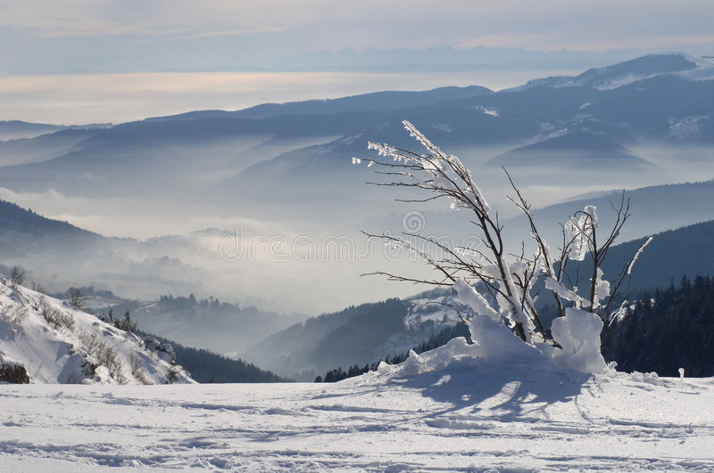 Winter mountains. Vosges Mountains in winter, Alsace, France royalty free stock photography