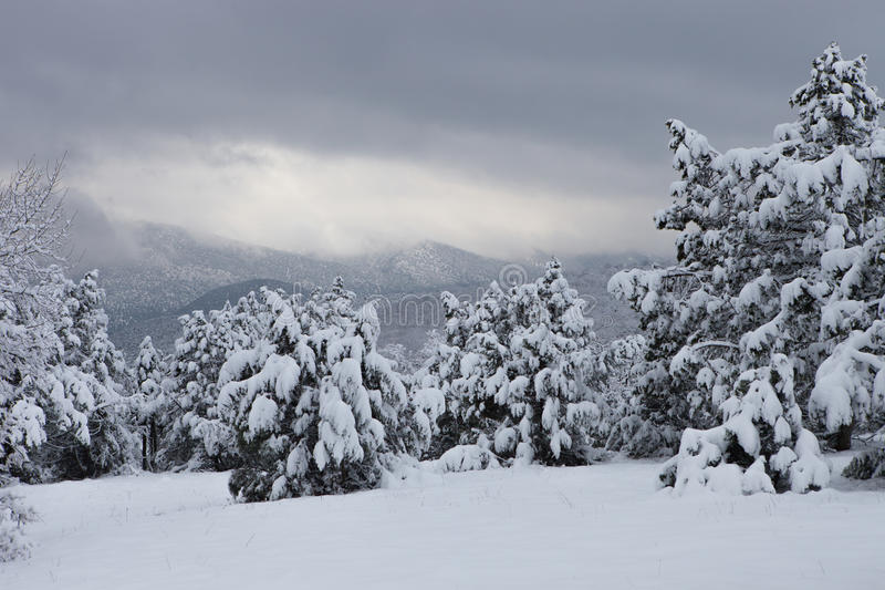 Winter mountains. Winter in the Crimean Mountains stock photo