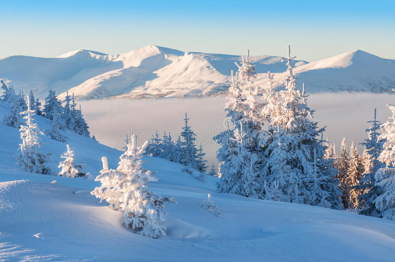 Winter in mountains. Beautiful winter in high mountains royalty free stock image