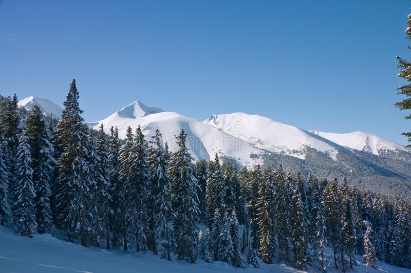 Winter mountains landscape. Bulgaria, Bansko stock photo