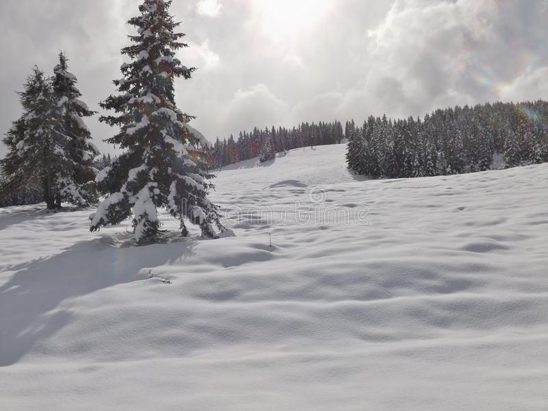 Winter in the mountains. On the plateau of Hochkrimml, Austria, Europe stock image