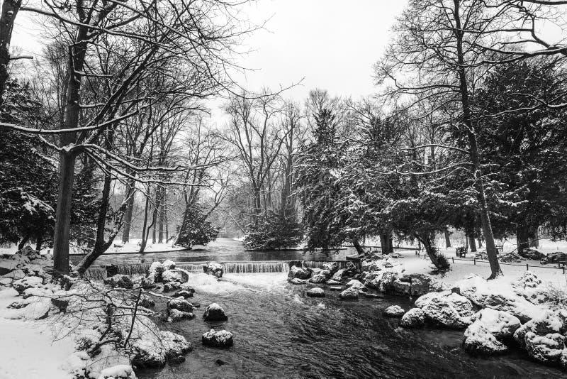 Winter-Natur-Landschaft im Schnee, mit Bäumen und Fluss, in Schwarzweiss lizenzfreie stockfotografie