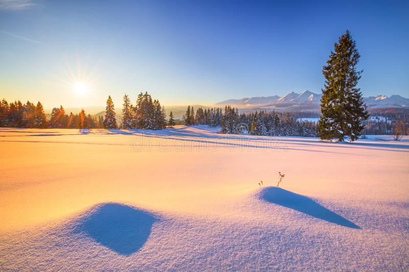 Winter natural background. Frosty winter morning in the mountains. Landscape with snowy mountain peaks and a snow covered valley. Bright winter sun in a clear stock photo