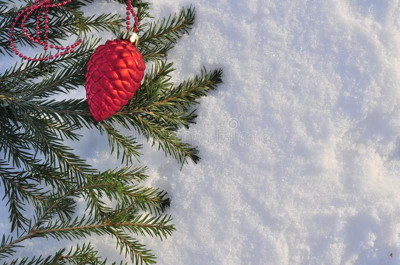 Winter nature ,Christmas background with spruce branch frosted with shiny lights, the snow. Happy New year frame, postcard. Text s. Pace. red Christmas toy on a royalty free stock photography