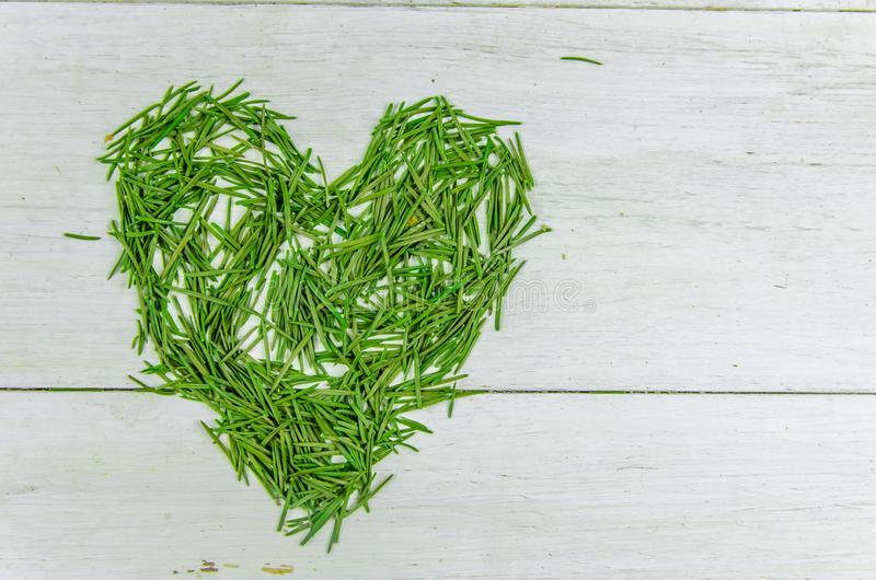 Winter. New year, christmas. spruce needles in the shape of a heart on a white background. With copy space stock image