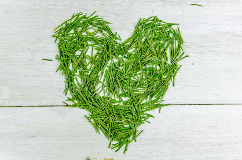 Winter. New year, christmas. spruce needles in the shape of a heart. On a white background royalty free stock photography